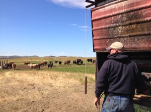 Rancher fires up the well pump that will keep the water troughs in this pasture full for a couple of weeks