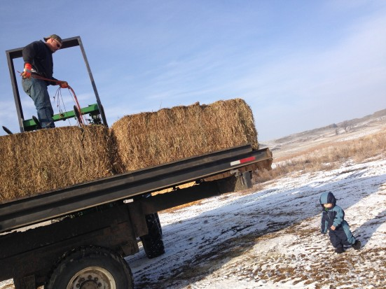 RB supervises Rancher loading the truck