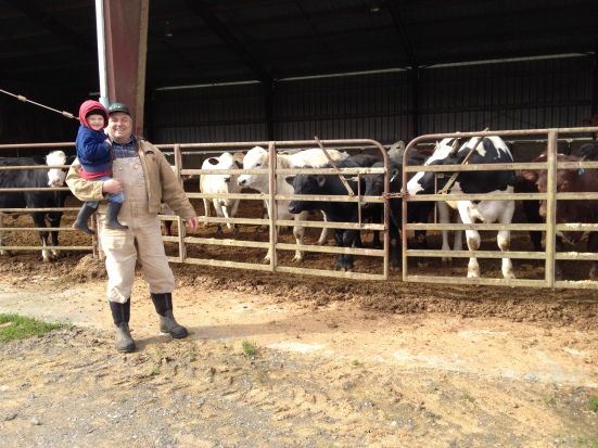 Meet my dad, Farmer Bruce, checking out cattle in his small feed yard in Kent, WA with my nephew.